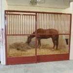 wilhite-frees-horse-stalls